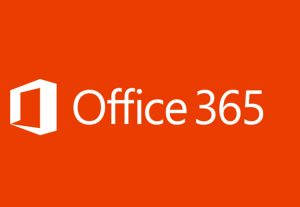 I will provide 1 hour of Development or Support in Office 365