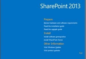 I will Install and Setup SharePoint Server 2010/2013/2016 Single Server