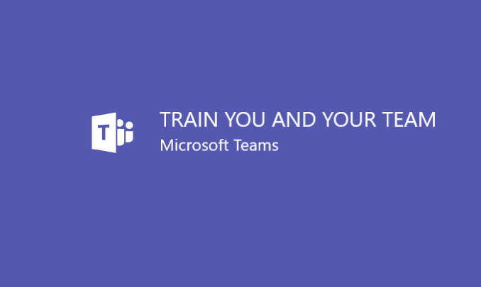 I will train you and 5 of your team on Microsoft Teams for 1 hour