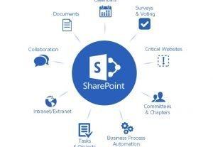 I will build your basic SharePoint Online Intranet